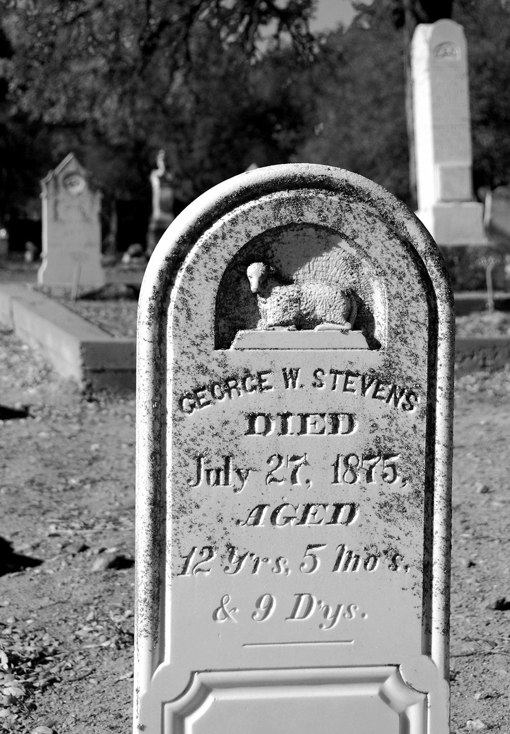 Coulterville Public Cemetery George Stevens.jpg
