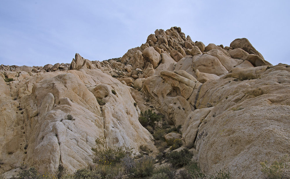 Joshua Tree NP - Stirrup Tank Area 09 Rocky Canyon.jpg