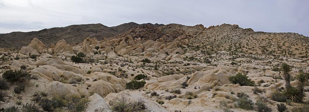 Joshua Tree NP - Stirrup Tank Area 11 Land of the Gnomes Pano Small.jpg