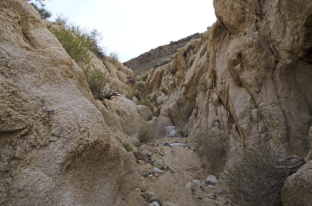 Joshua Tree NP - Stirrup Tank Area 14 Canyon 3.jpg