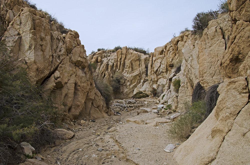 Joshua Tree NP - Stirrup Tank Area 14 Canyon 5.jpg