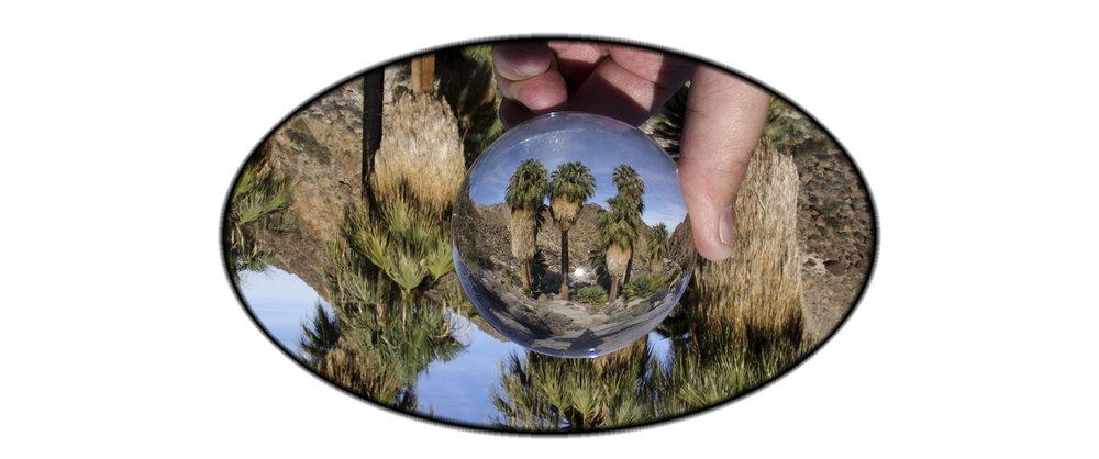 Fortynine Palms Oasis Joshua Tree NP 19.jpg
