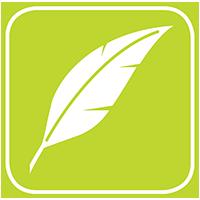 lightweight logo.png