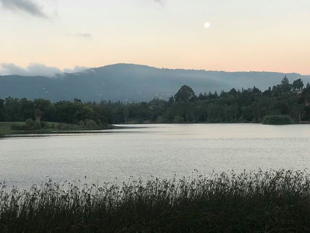 Moon setting in Los Gatos.