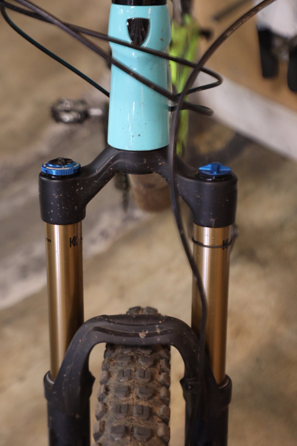 A healthy, happy looking front fork.
