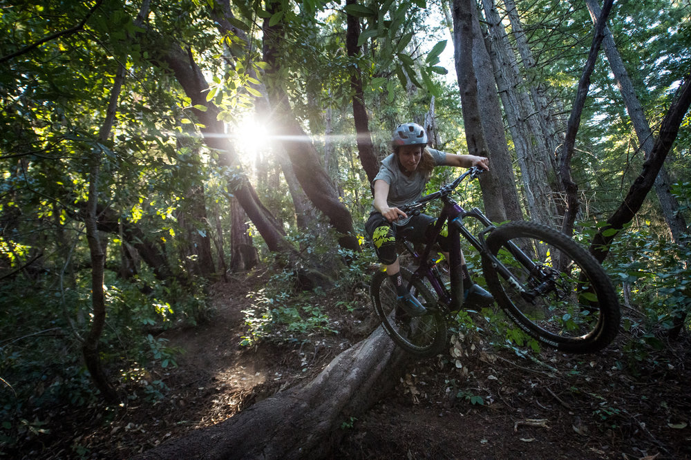 Photo of Casey Brown by Ian Collins.