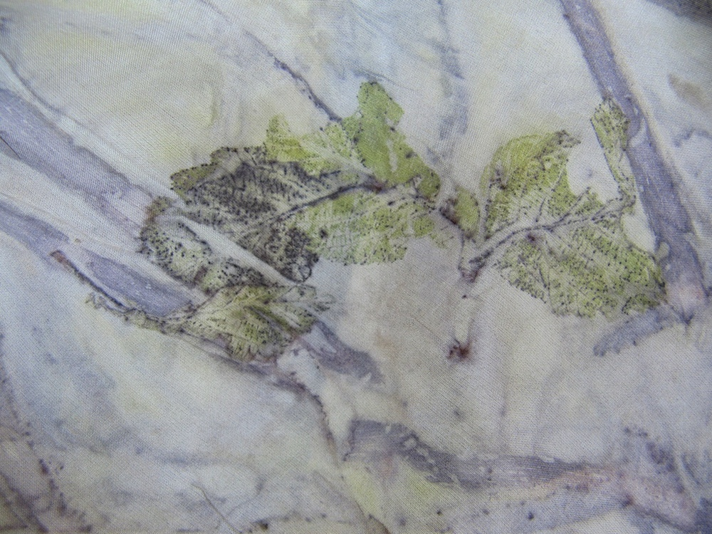 Eco-print of Alder Leaves and Bark on 8mm Habotai Silk