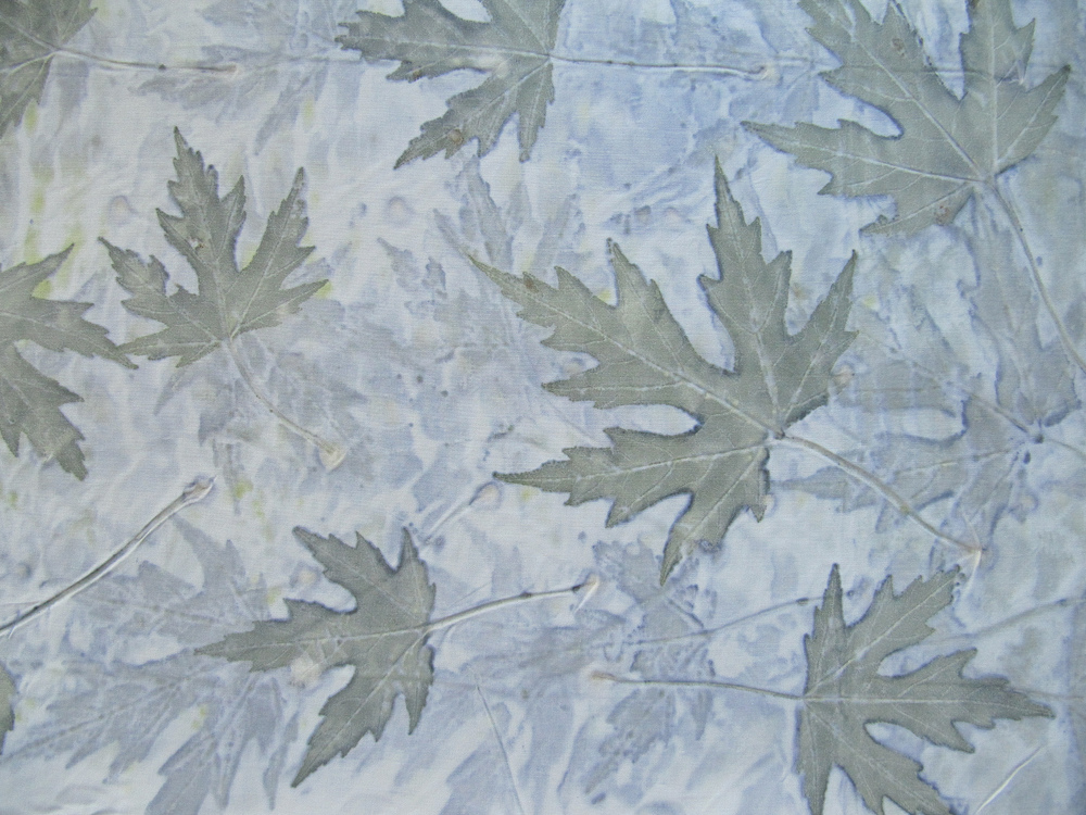 Silver Maple Eco Print on Silk Broadcloth