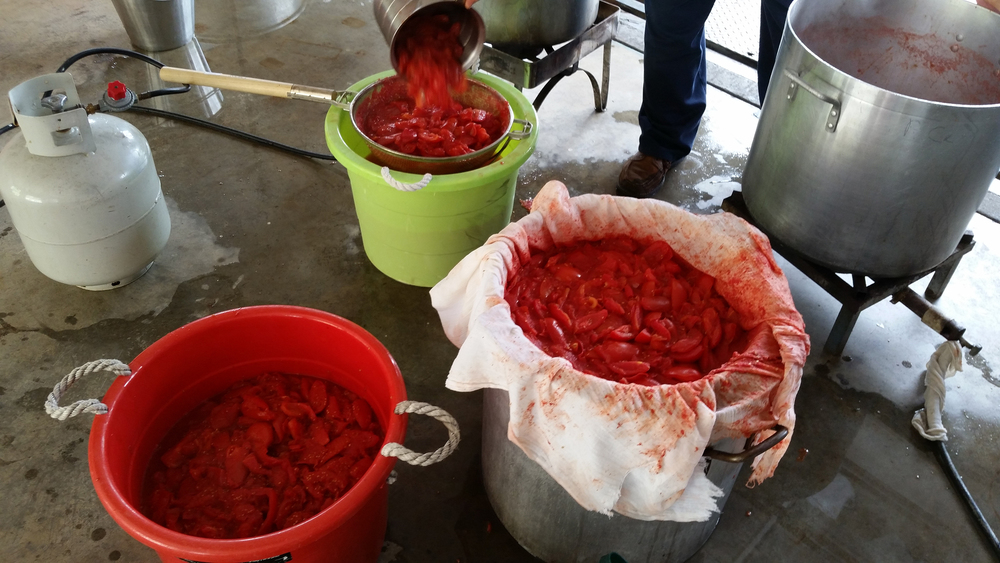 PC_Canning_Tomatoes_03.jpg