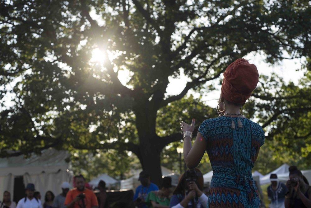 africanartsfestivallr_55.JPG