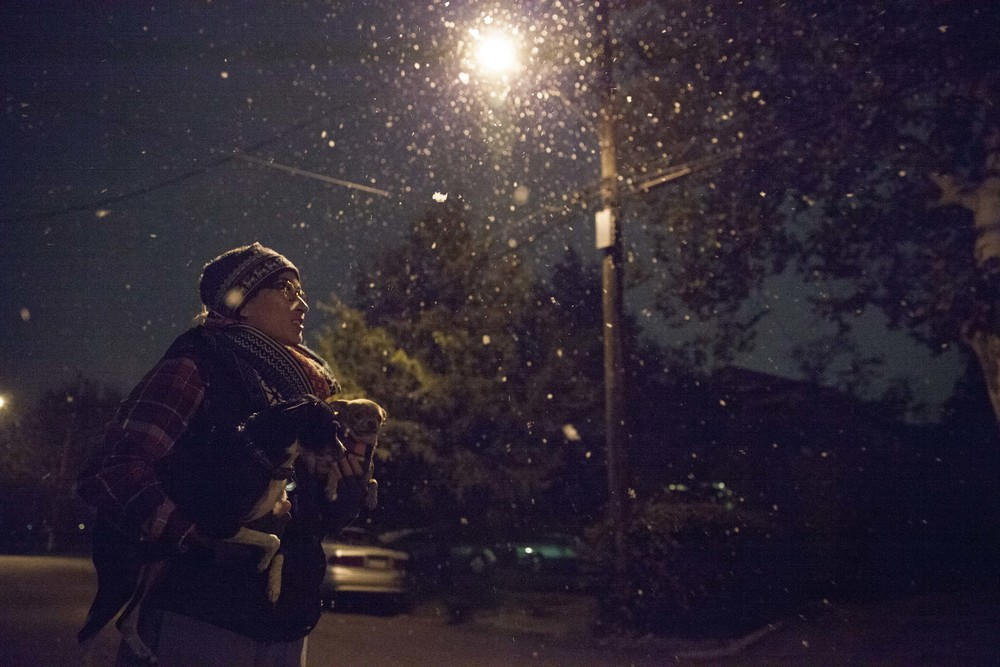 An east Dallas resident enjoys the first snow of the season with their 2 small dogs.