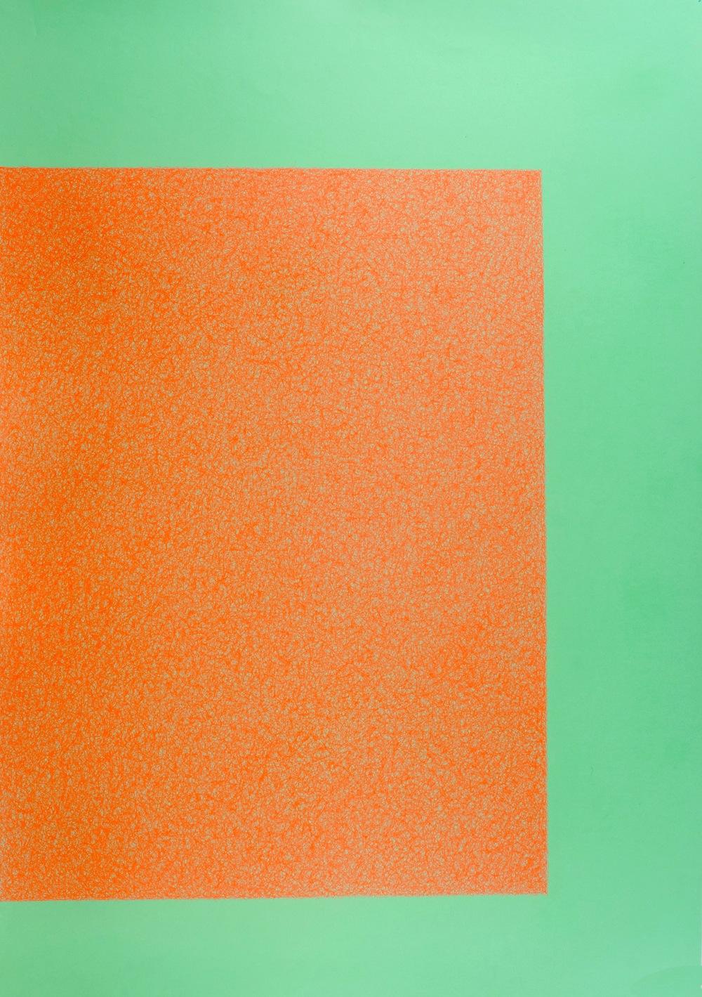 Las flores del bien, 2013 / In collaboration with  Martina Quesada  / Mix media on paper /100cm x 70cm