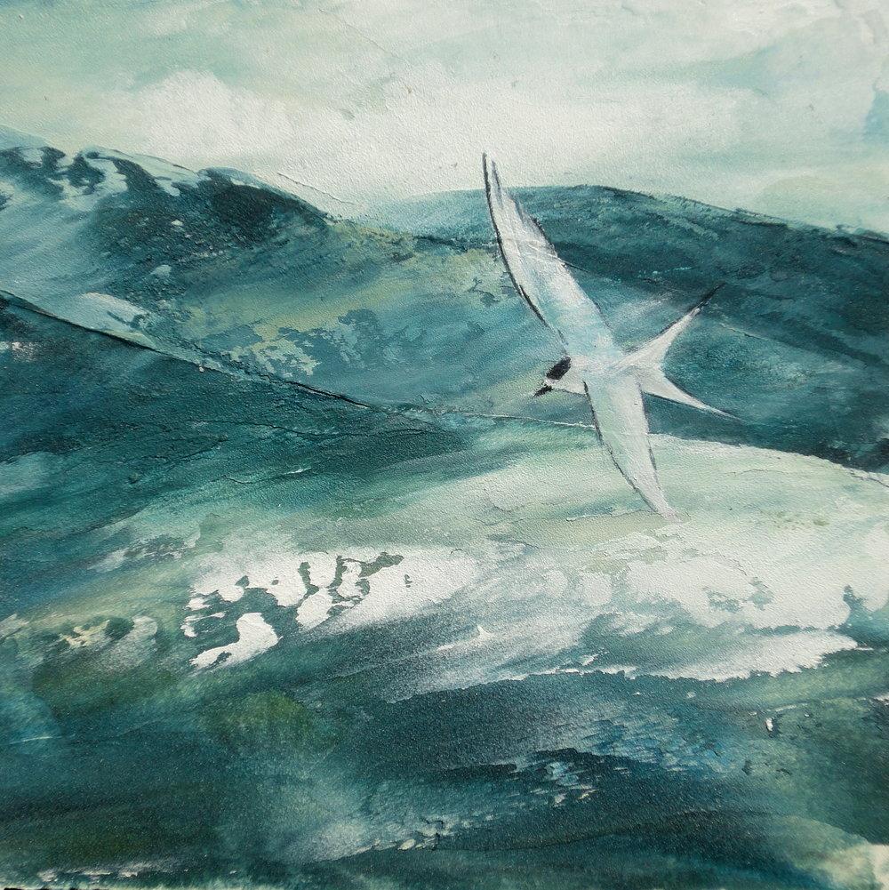 Ocean Swells.JPG