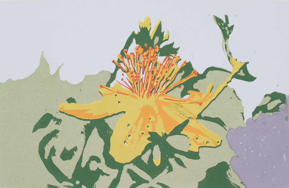 Yellow Flower, 2011