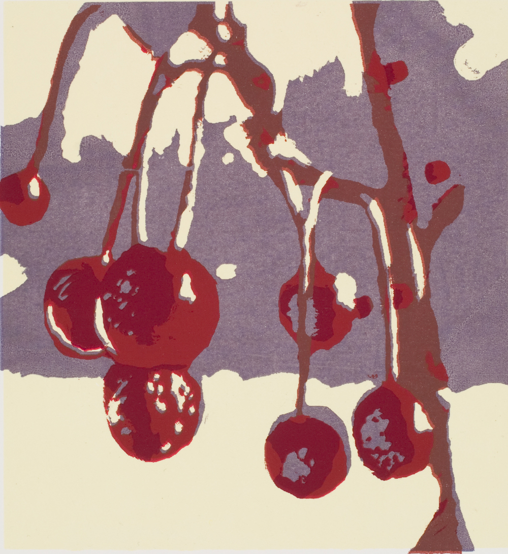 Winter Berries, 2011