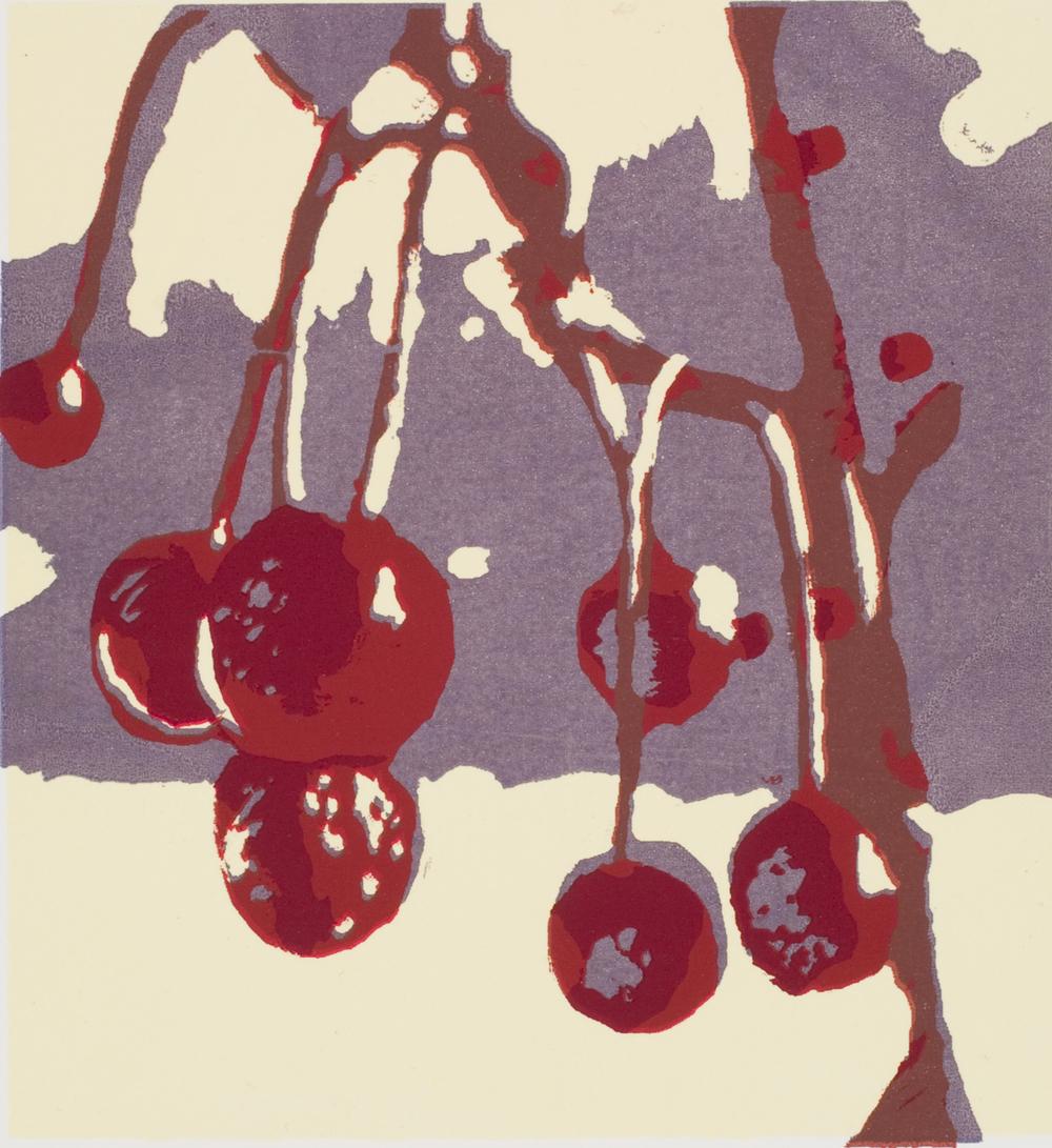 Winter Berries, 2011