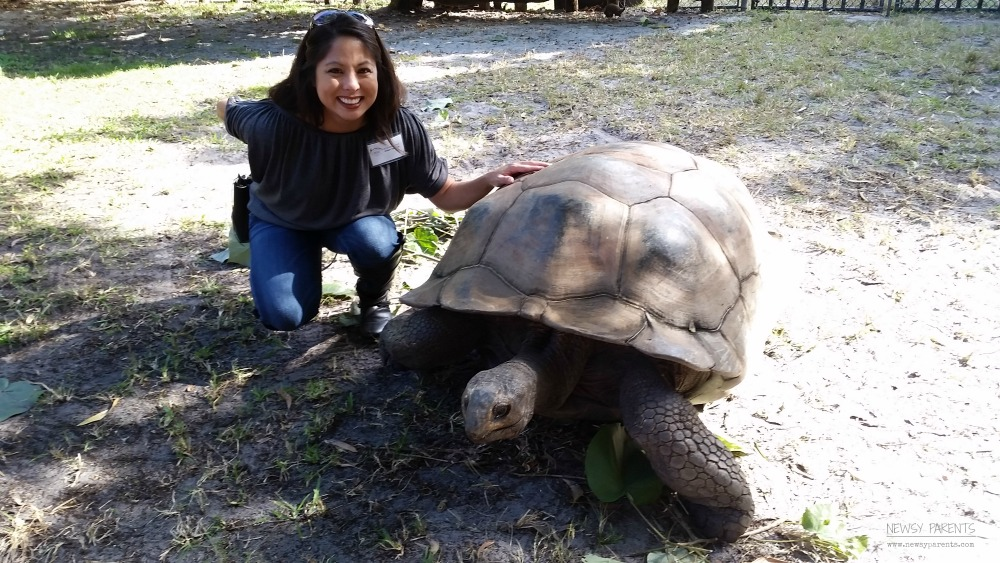 Palm-Beach-Zoo-Conservation-Society-Newsy-Parents