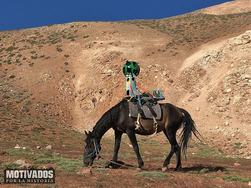 HorseTrekker