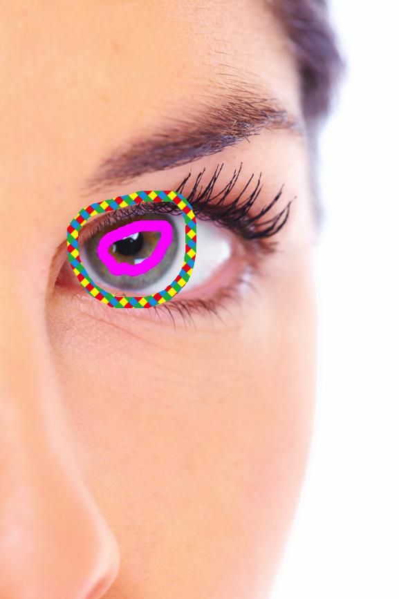 Eyes-Lines.png