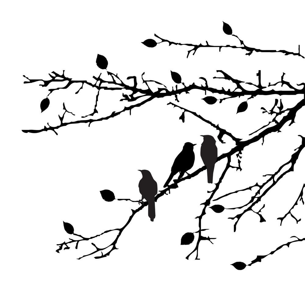 BirdsInTree.jpg