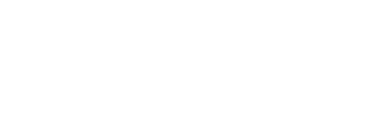 Nystrum Guitar Company