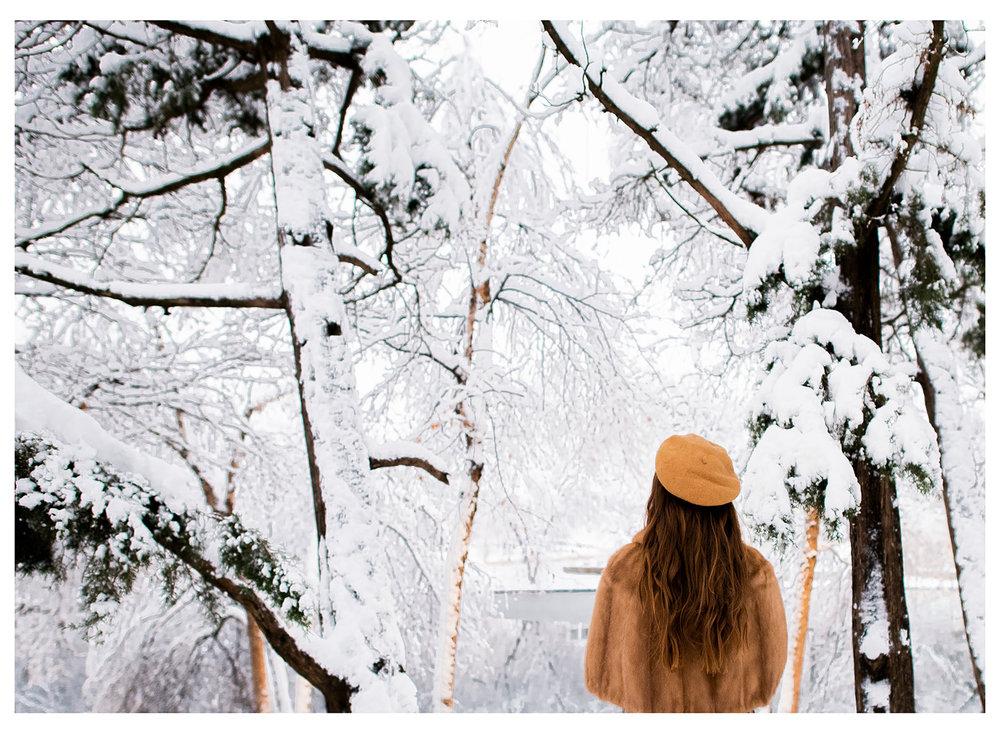 Nicole Bissey Photography 46.jpg