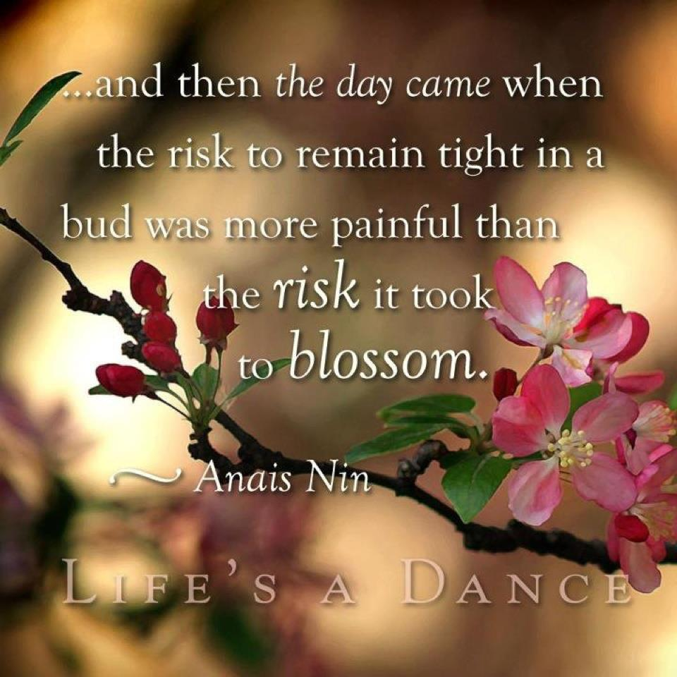 Late Blooming Life-Anais Nin photo quote