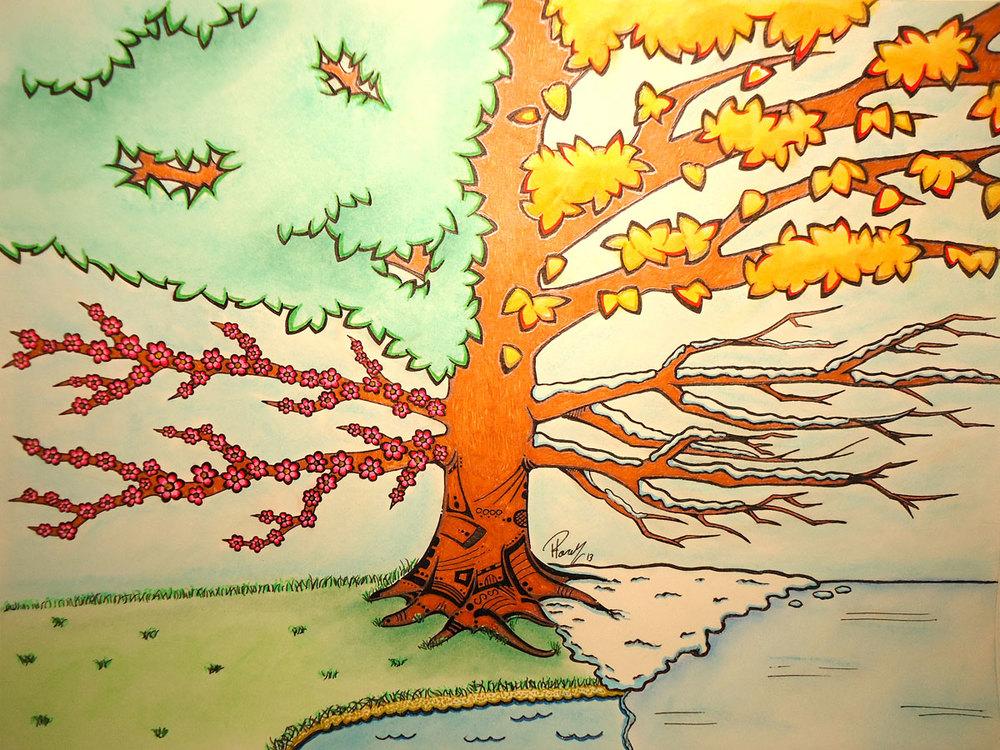 Four season tree illustration by patrick hardy