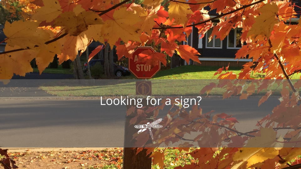[FBAd] JtoD Looking for a sign-.png