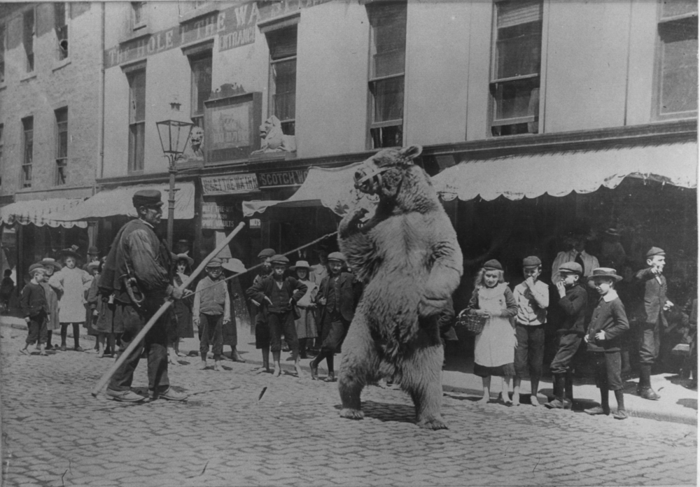 Travelling Ukrainian with his dancing bear outside the Hole in the Wall Pub, Dumfries, 1907