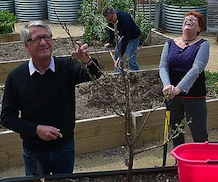 Docklands gardeners refuse to lose the plot THE AGE