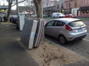Public dump or public green space? Rathdowne st. Carlton