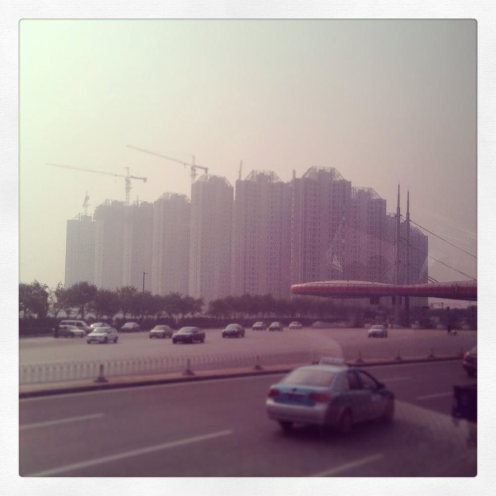 concrete_jungle.jpg