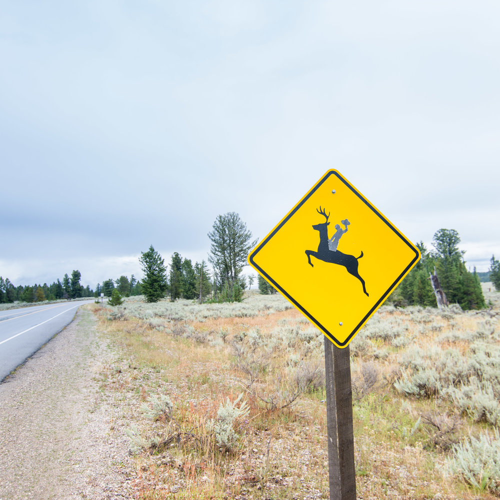 Signs2_KelliPricePhotography_USAAugust2015.jpg