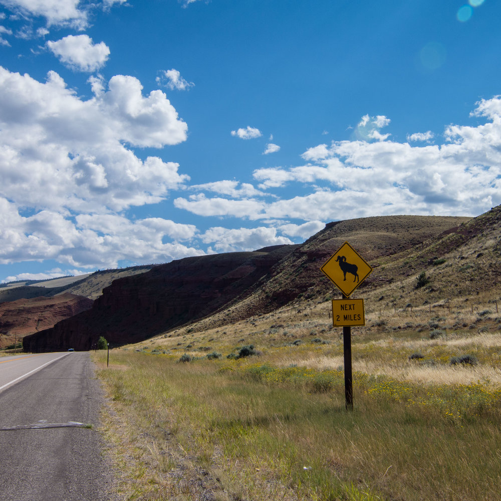 Signs3_KelliPricePhotography_USAAugust2015.jpg
