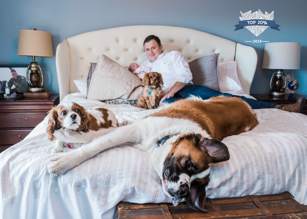 Pets/Animals Category - 1,505th place out of 14,426<br>This was the most liked image! Three dogs and a newborn session.....sure, let's do it!