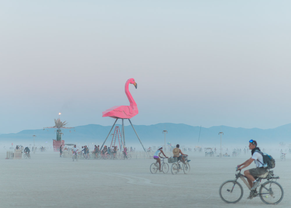 BurningManFRI155_KelliPricePhotography_BlackRockCity_September2017.jpg