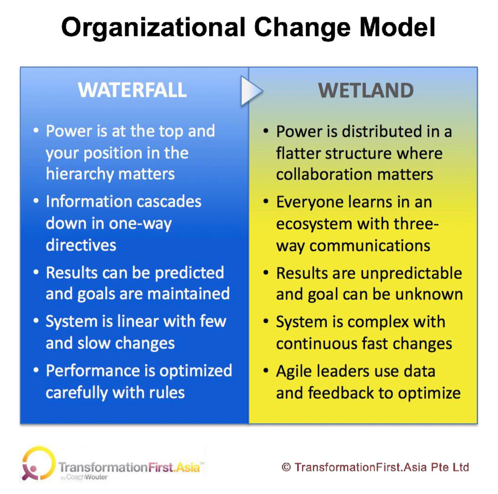 Organizational Change Model July 2018.jpg