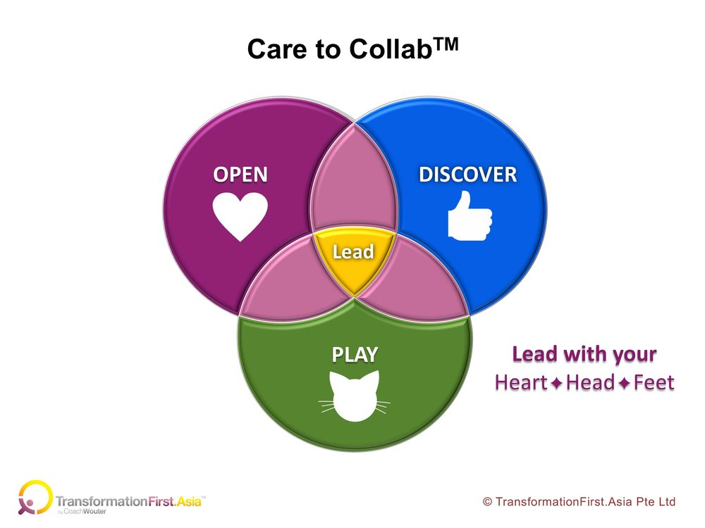 Care to Collab Model 2.jpg