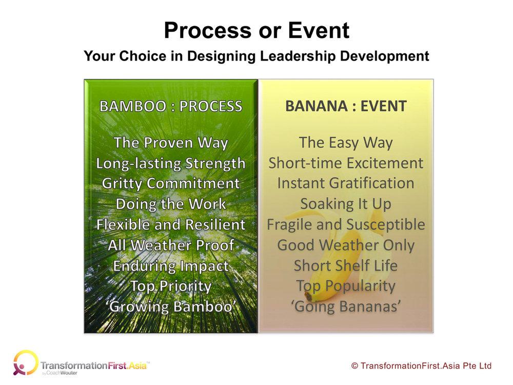 Bamboo or Banana (1).jpg