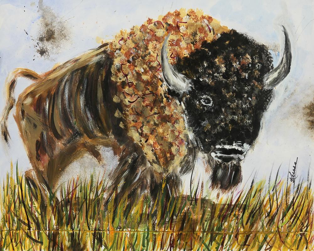 Buffalo #3