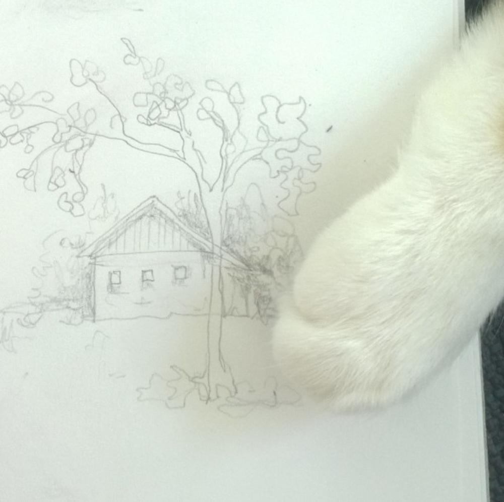 KendraShedenhelm_ScenicScene_MakeArtThatSells_Sketch_KittyAttack