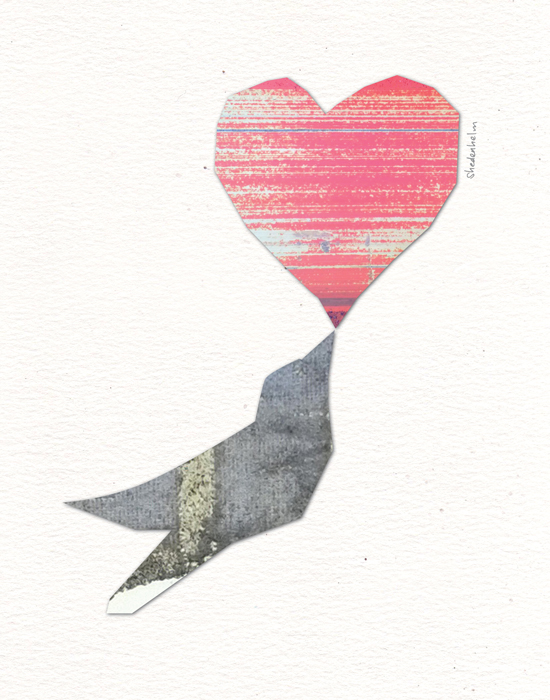 Kendra Shedenhelm_Bird Heart Collage