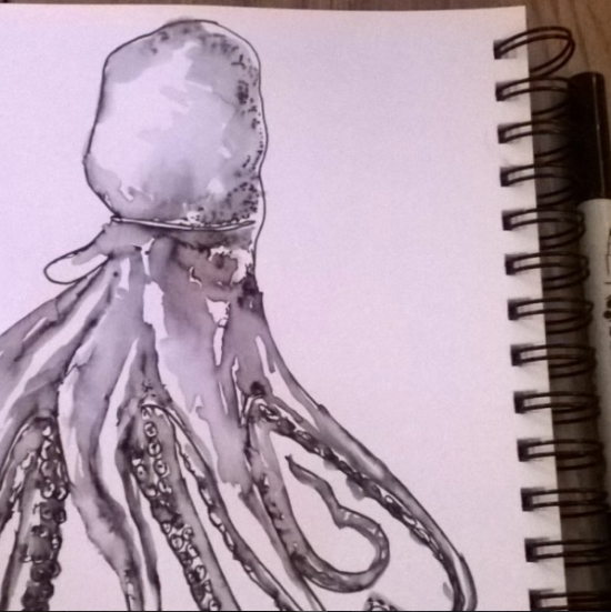 Kendra_Shedenhelm_Watercolor_Sketch_Octopus