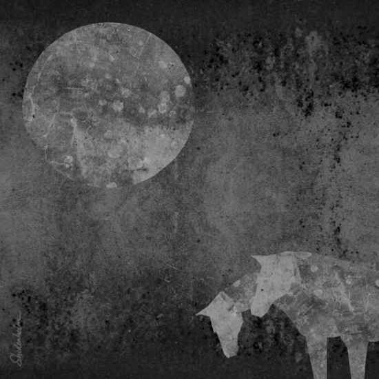 Kendra Shedenhelm Illustration Friday Horse Moon Collage