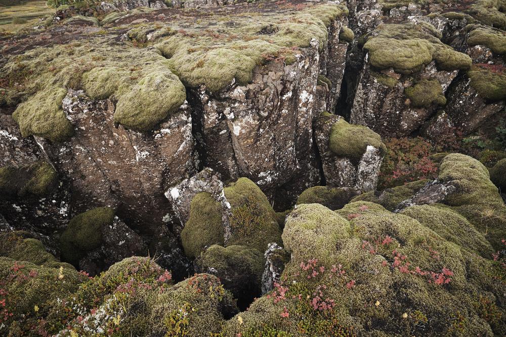 Þingvellir 4