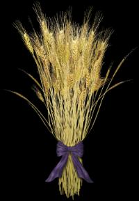 """An """"omer"""" -- a sheaf of wheat"""