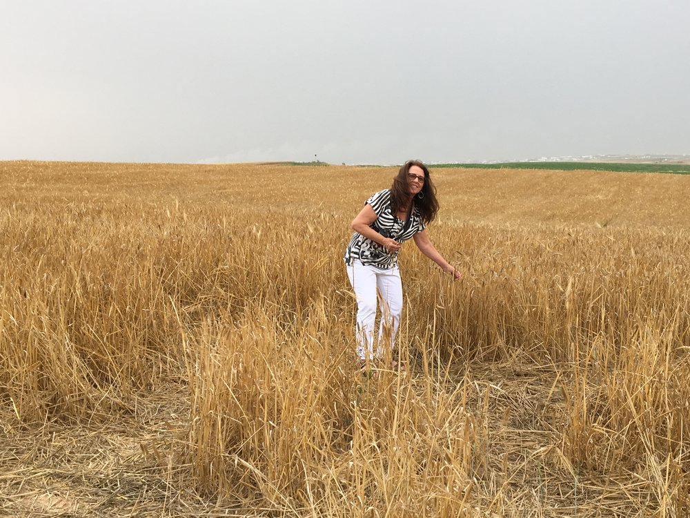 Smoke can be seen less than a mile away on the Gaza border as Deby, director of Song For Israel, picks wheat.