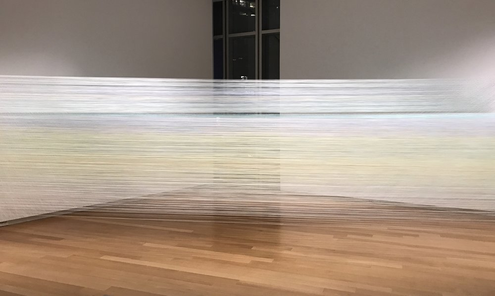 the eye's level  2018 cotton thread and staples 5 by 56 by 18 feet photograph by Eric Wolf (taken at night)