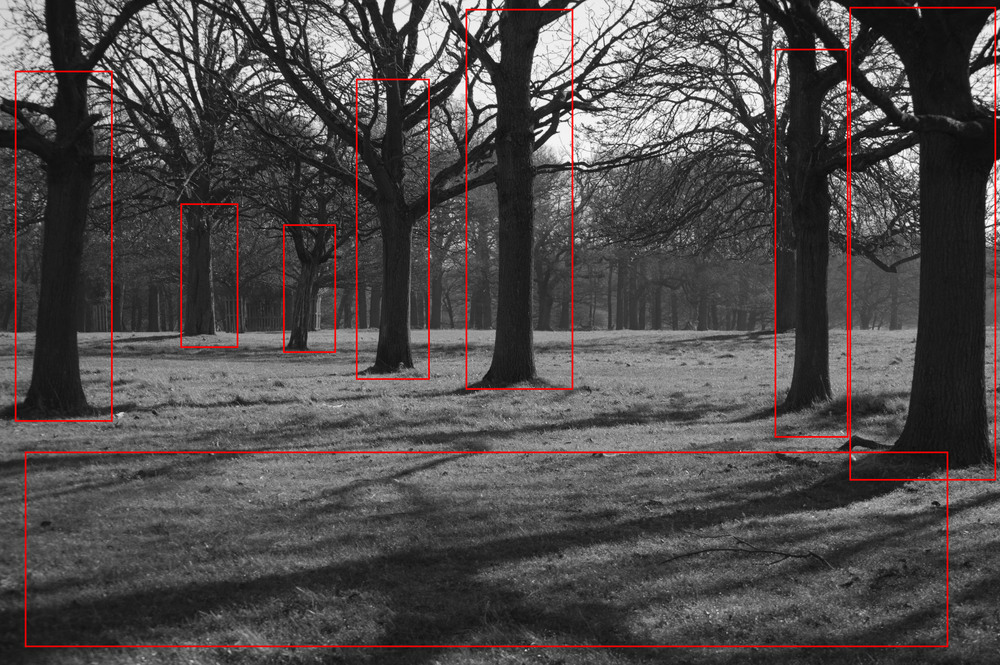 Picture 2. Except for the block of grass in the foreground, the balance is primarily created by the locations of the trees which, although slightly left hand side dominated, there is a balance brought about by the right hand trees being more in the foreground.